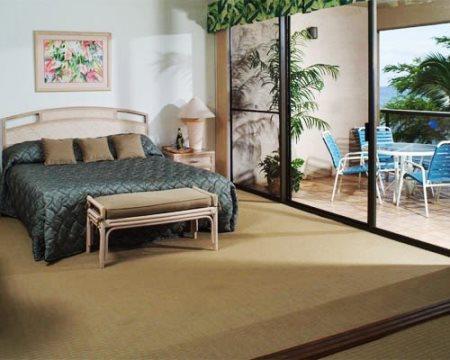 2 Bedroom Kaanapali Beach Club